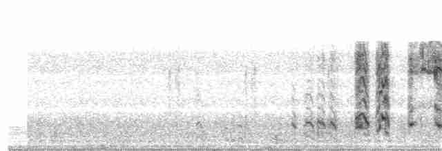 White-tailed Ptarmigan - Luke Pheneger