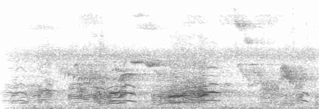 Canada Goose - Wil Hershberger