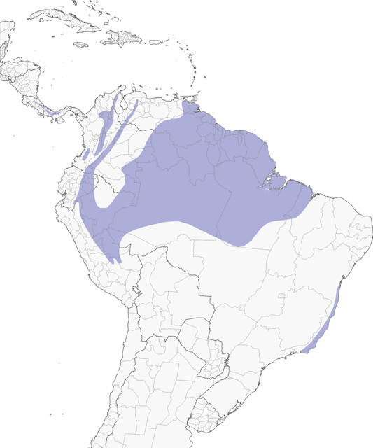 Distribution of the White-crowned Manakin