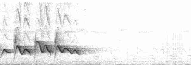 Rufous-browed Peppershrike (Northern)